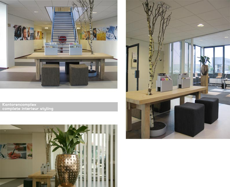 Q creationz interieur styling bedrijven for Inrichting advies